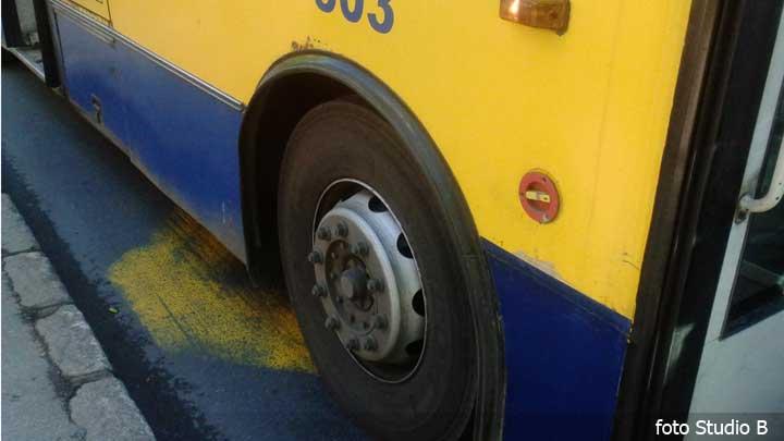 autobus-042016