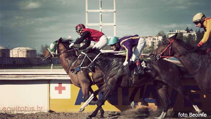hipodrom-konji