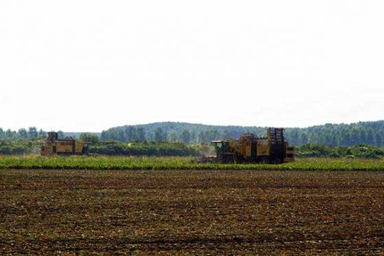poljoprivreda02102014.jpg