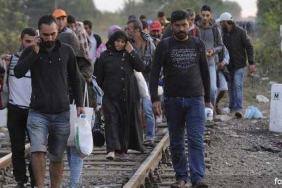 uzbeglicemigranti09092015.jpg