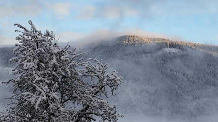 planina18012015