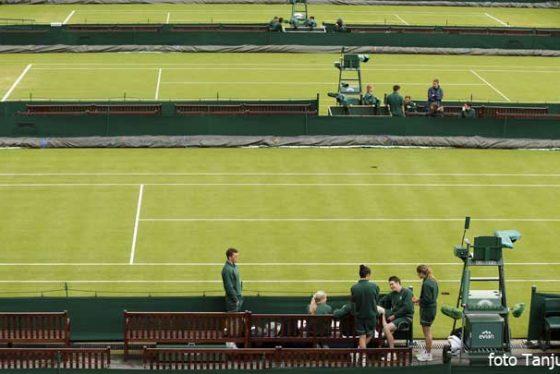 teren-vimbldon-tenis