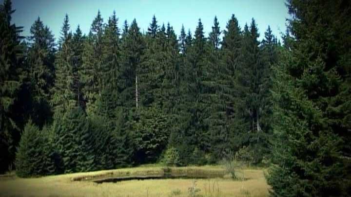 Ivanjica-3-priroda-stb