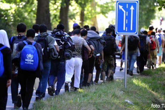 migranti-srbija-izbeglice