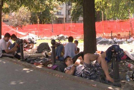 migranti-beograd-park-video