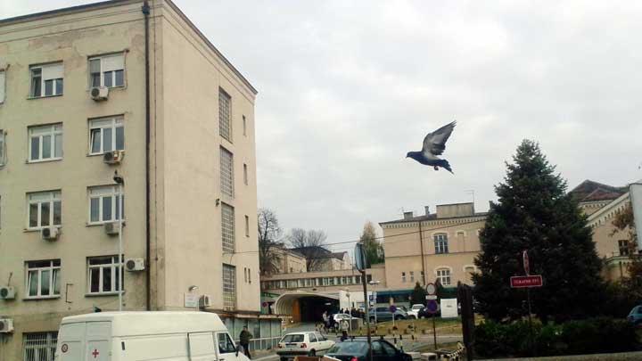 urgentni-centar-vesnastb