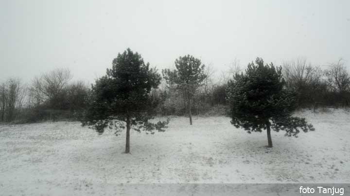 sneg-zima