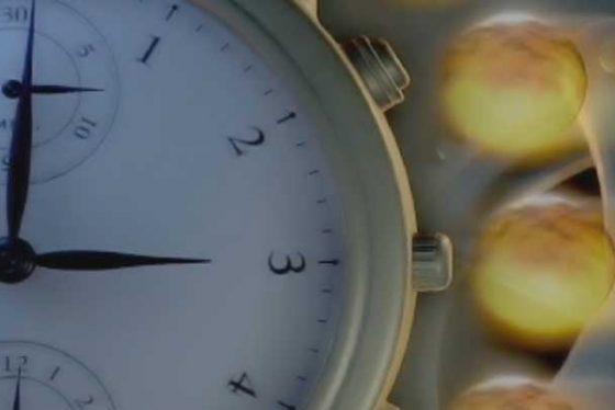 vreme-sat