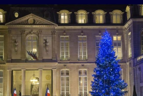 A Christmas tree is light up at the Elysee Palace in Paris, France, Monday, Dec. 11, 2017. (AP Photo/Michel Euler)
