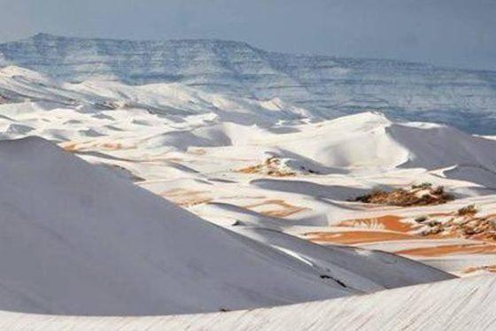 sahara-sneg-tanj