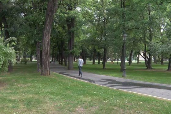 Gradski park Zemun-pokrivanje thumbnail