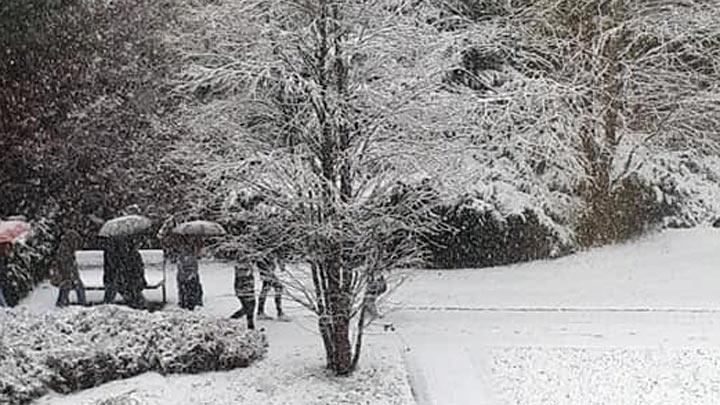 sneg-prvisneg-