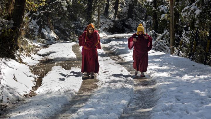 indija-sneg